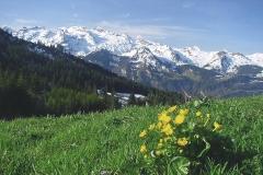 csm_fr__hling_innerschweiz_quelle_seehotel_wilerbad_6773d35918